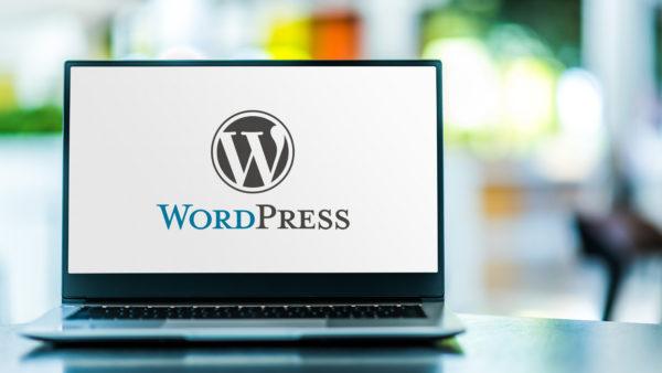 wordpress präsenz schulung